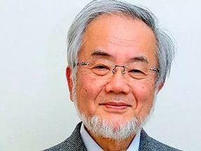 Нобелевскую премию по медицине и физиологии